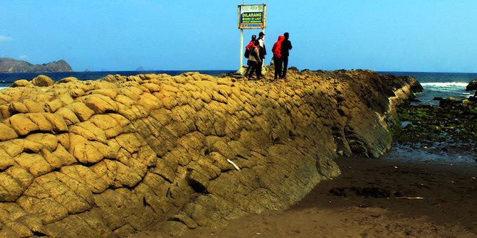 Lima Batu Karang Terunik Muka Bumi Pantai Watu Ulo Kab