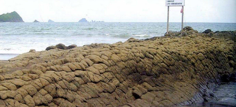 Pantai Watu Ulo Jember Indowalk Kontak Person Pengelola Kab