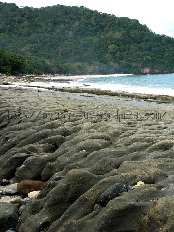 Tanjung Papuma Eksotisme Tersembunyi Ayuavenue Setelah Puas Menelusuri Pantai Watu