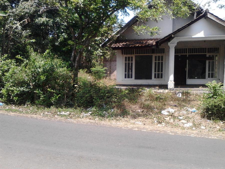 Tanah Dijual Murah Kel Kebonagung Kab Jember Rumah Kota Lain