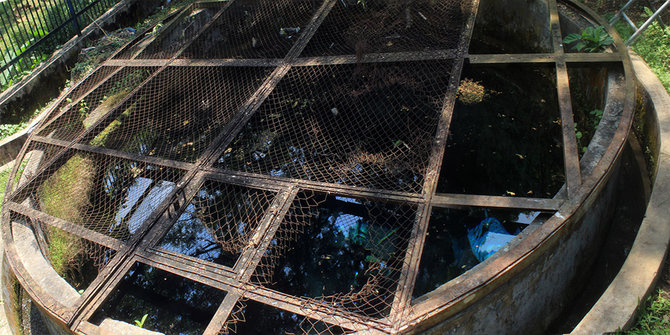 Fenomena Air Berkhasiat Pemandian Patemon Merdeka Sumber 2014 Dwi Andi