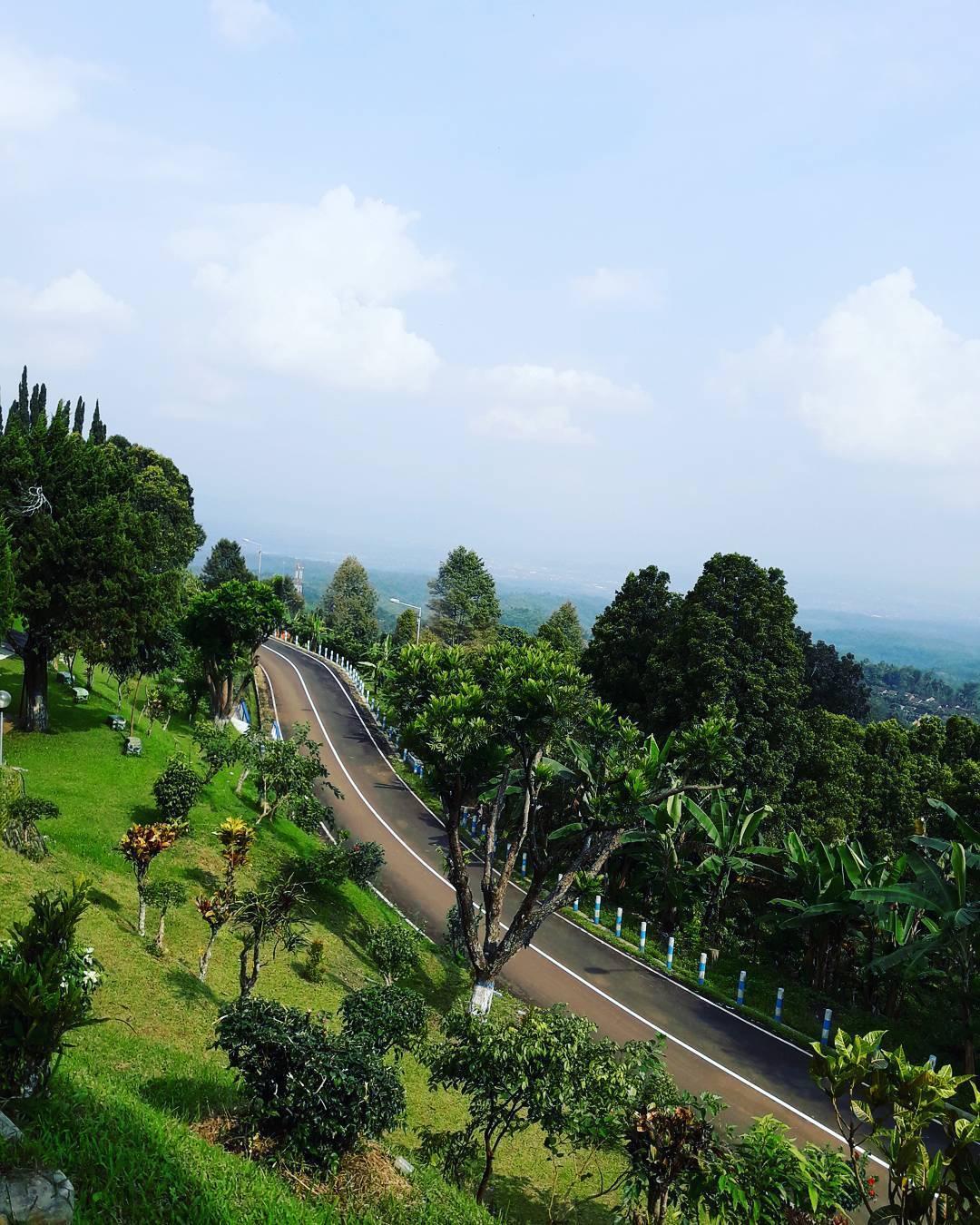 Mulai Jenuh Refreshing Jember Ala Ubud Bali Yuk Traveling Jalanan