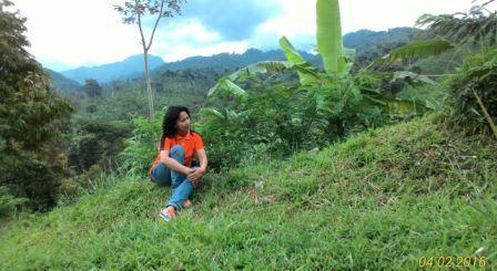 Puncak Rembangan Jember Pariwisata Indonesia Kab
