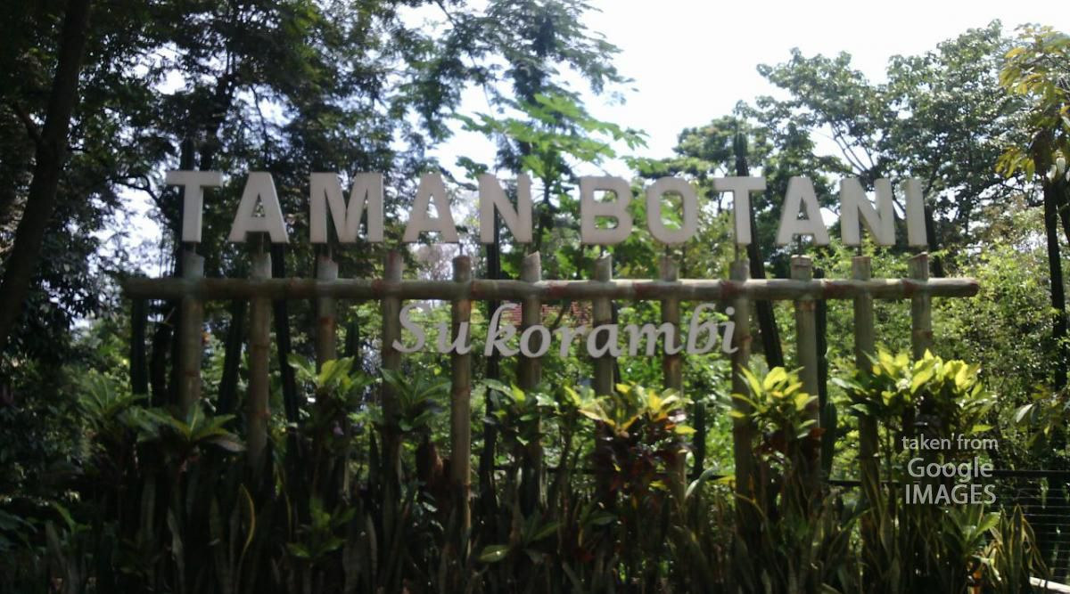 Indonesia Holiday Network Taman Botani Sukorambi Kab Jember
