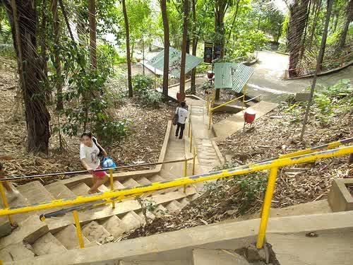 Keindahan Taman Botani Sukorambi Jember Terdapat Lembah Indah Hamparan Sawah
