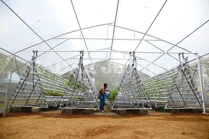 Soft Launching Kebun Edukasi Hidpronik Taman Botani Sukorambi Radar Jember