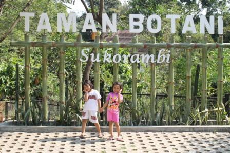 Taman Botani Jember Cerita Andra Sukorambi Kab