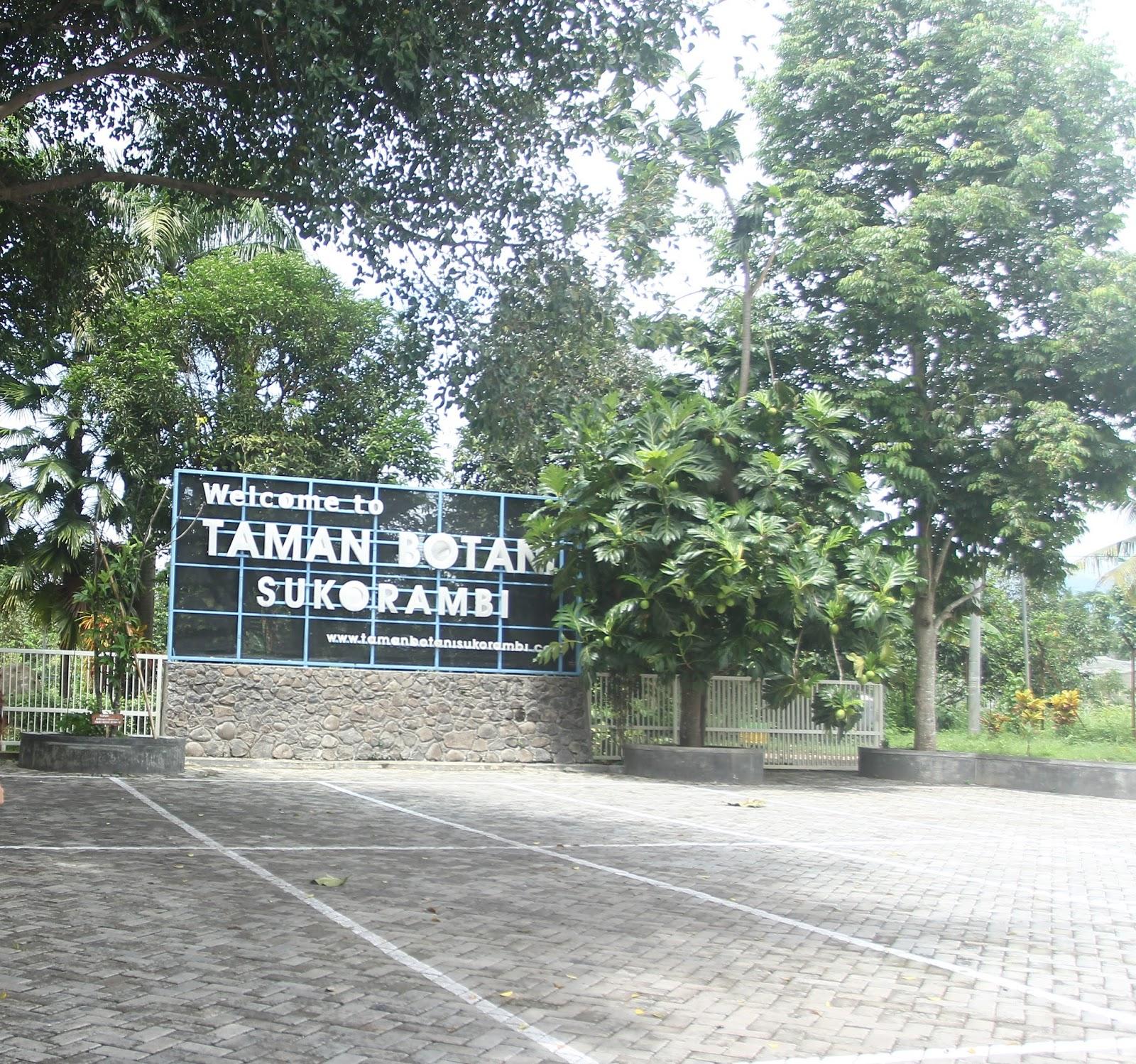 Taman Botani Jember Travelresources Helmiyatul Hidayati Sukorambi Menghadirkan Kab