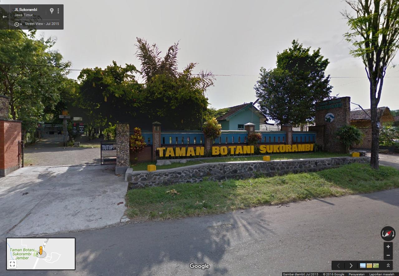 Taman Botani Sukorambi Botanical Garden Blusukan Jember Truck Arah Lumajang