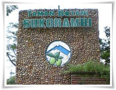 Taman Botani Sukorambi Botanical Garden Jember Ajib Advertisements Kab