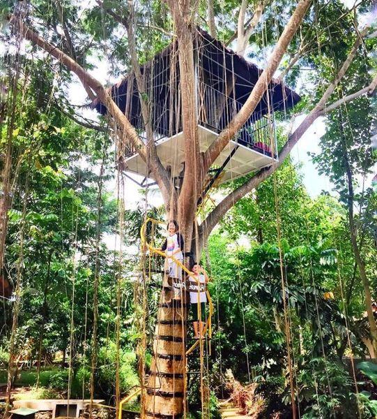 Taman Botani Sukorambi Indah Jember Jawa Timur Lihat Id Kab