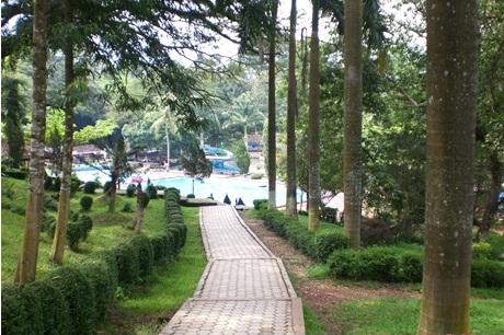 Taman Botani Sukorambi Jember Rekreasi Belajar Tempat Wisata Pemandian Kab