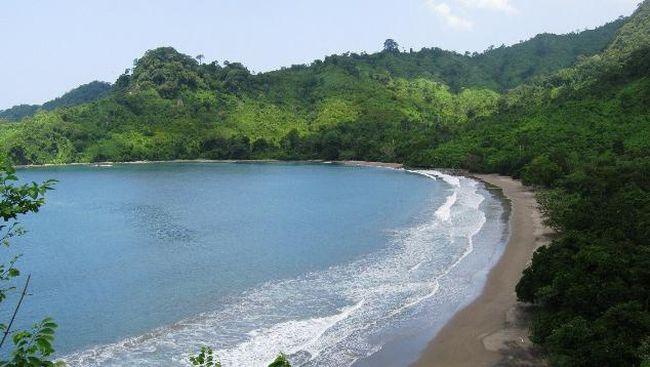 Betiri Taman Nasional Surga Petualang Meru Kab Jember