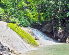 Ekologi Wisata Air Terjun Watu Ondo Taman Nasional Meru Betiri