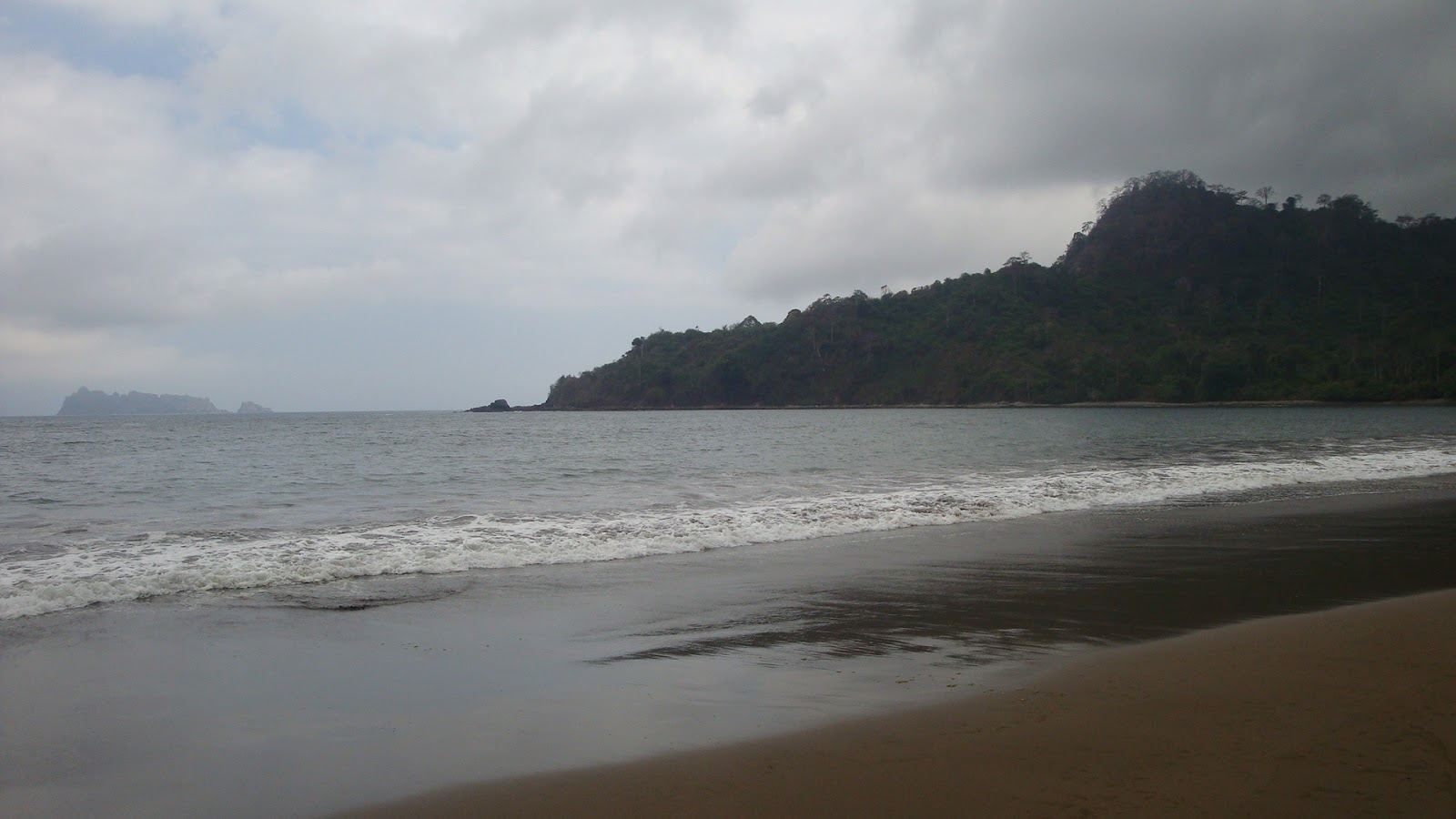 Jalan Pantai Bandealit Taman Nasional Meru Betiri Kab Jember