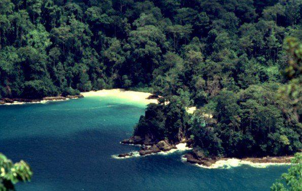 Keindahan Taman Nasional Meru Betiri Kab Jember