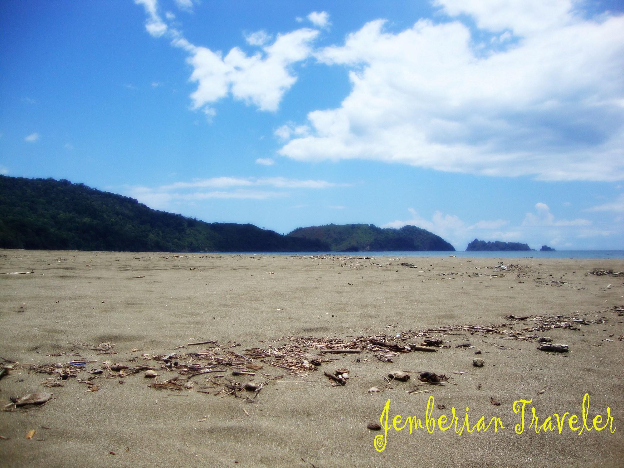 Menjelajah Pantai Bandealit Taman Nasional Meru Betiri Jember Jt Bd