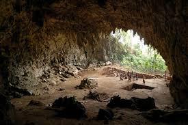 Misteri Keberadaan Manusia Kerdil Taman Nasional Meru Betiri Jember Jawa