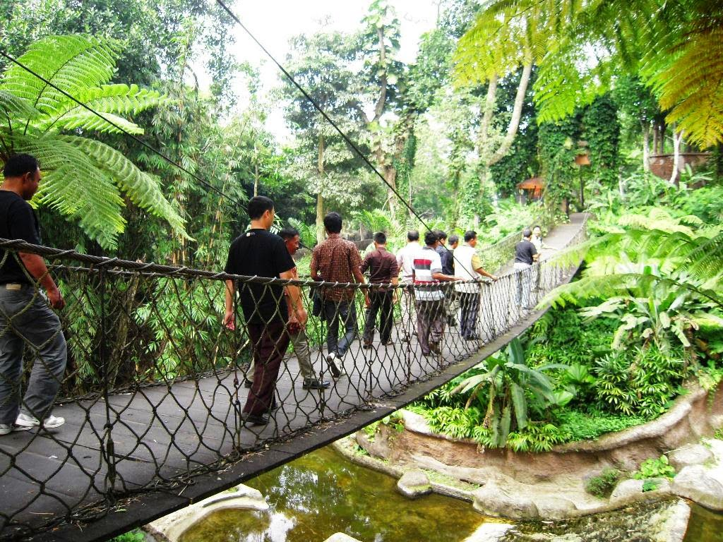 Nature World Taman Nasional Meru Betiri Jawa Timur Kab Jember