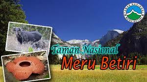 Obyek Daya Tarik Wisata Taman Nasional Jawa Timur East Java