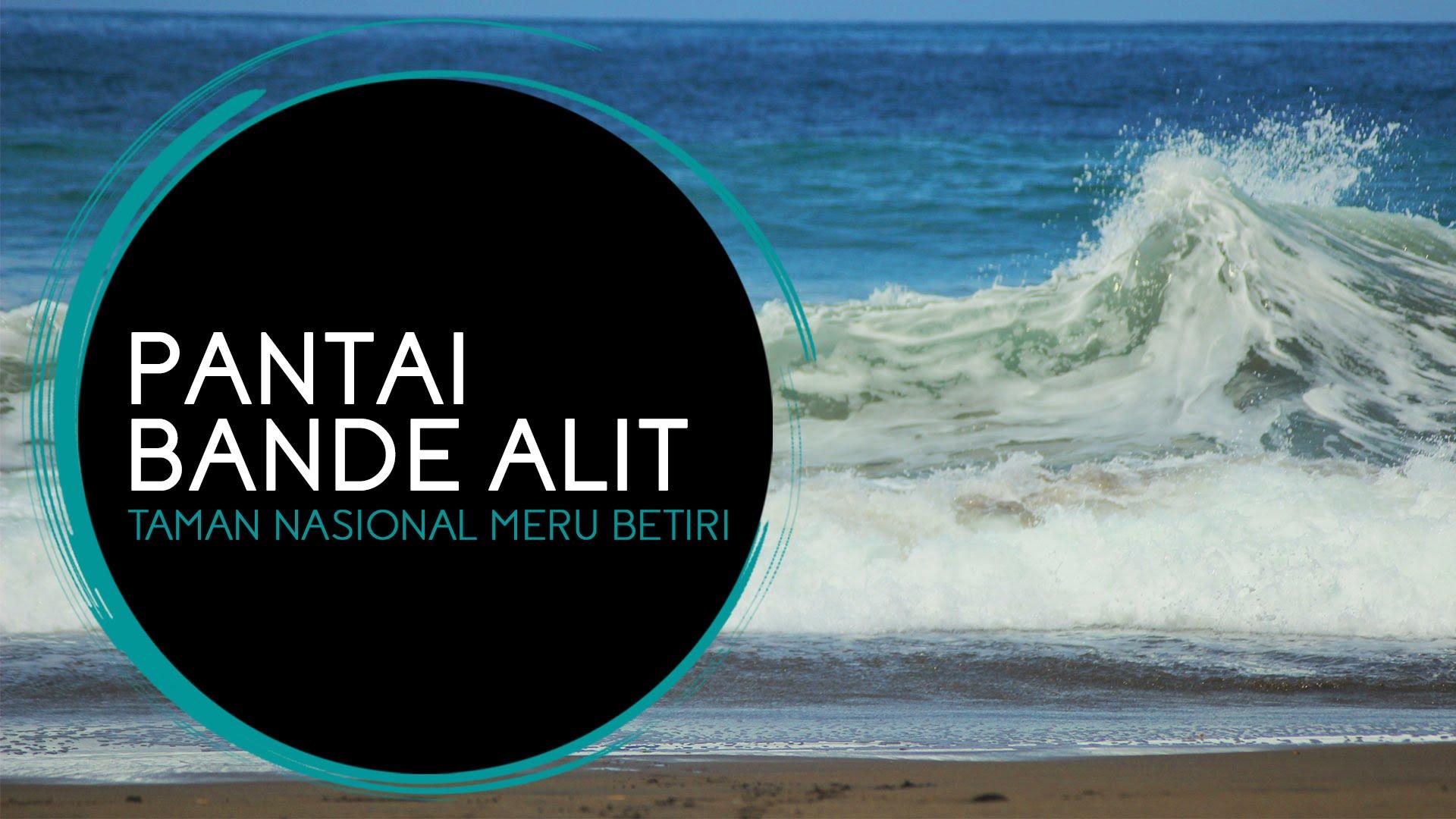 Pantai Bande Alit Taman Nasional Meru Betiri Youtube Kab Jember