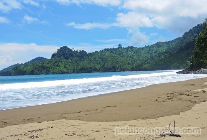 Pantai Bandealit Jember Sepi Asik Bertualang Yuk Piknik Taman Nasional