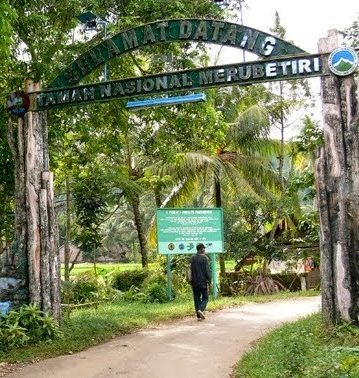 Taman Nasional Meru Betiri Habitat Flora Fauna Langka Motivasinews Mungkin