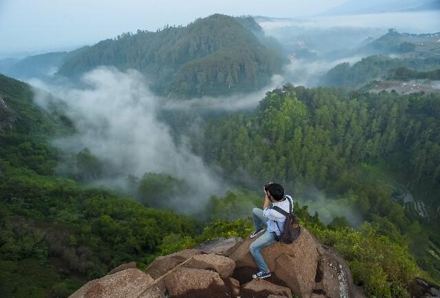 Taman Nasional Meru Betiri Jember Banyuwangi Detak Berita Tag Pulau