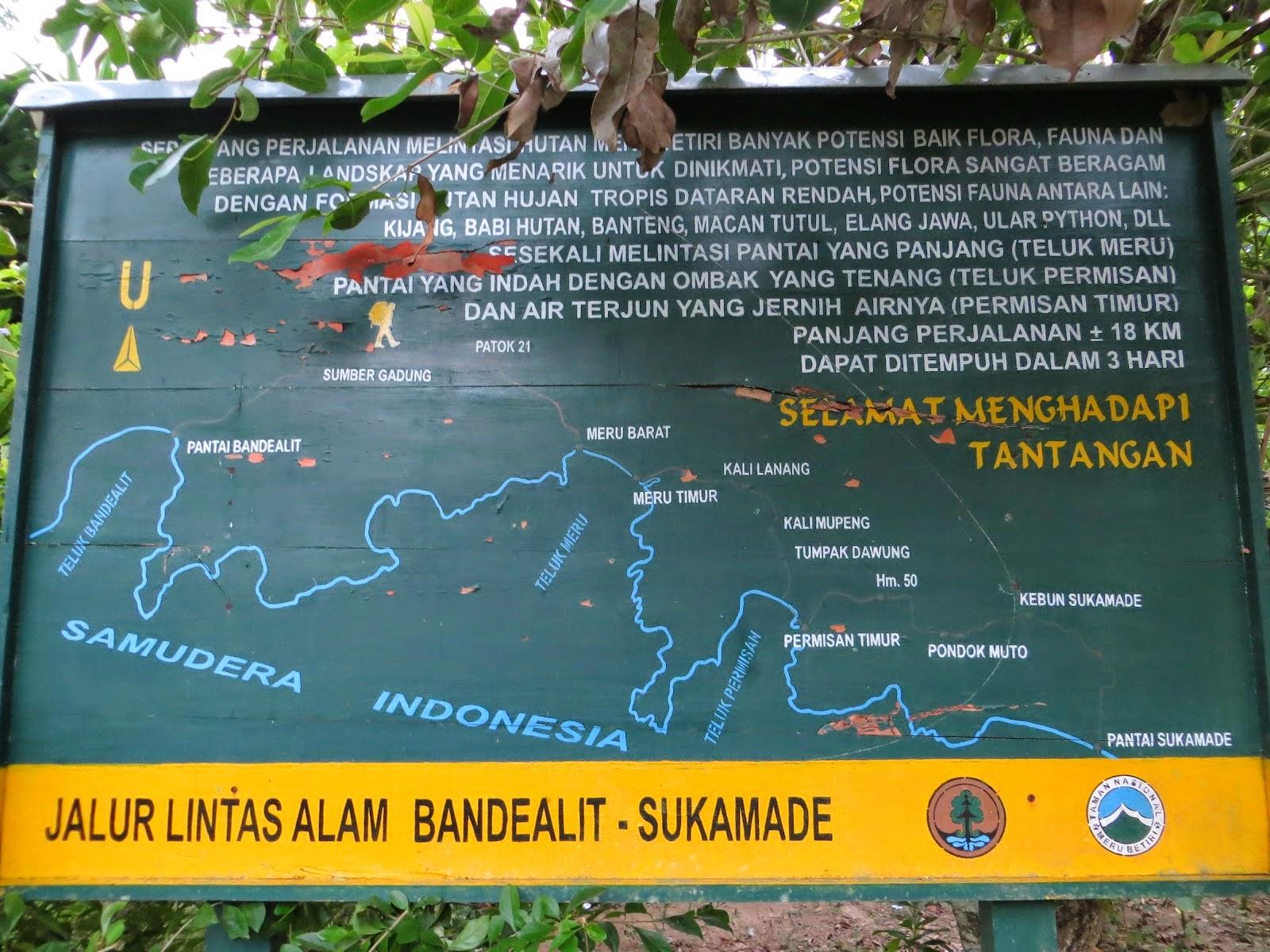 Taman Nasional Meru Betiri Surganya Flora Fauna Langka Jungle Tracking