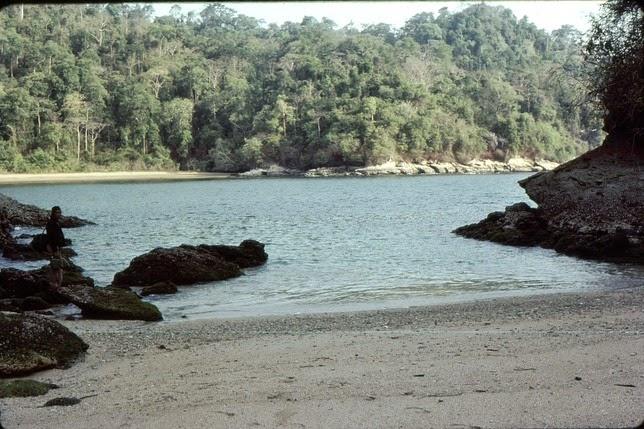 Taman Nasional Meru Betiri Surganya Flora Fauna Langka Pantai Permisan