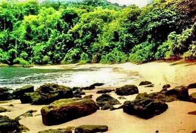 Wisataku Taman Nasional Meru Betiri Kab Jember