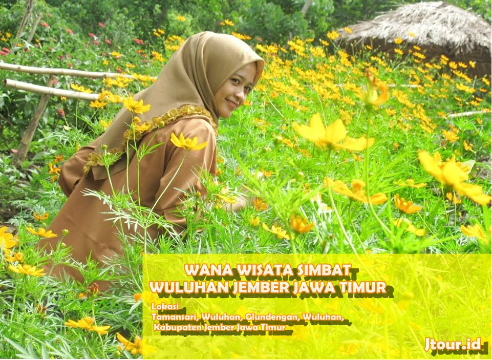 Wana Wisata Simbat Wuluhan Jember Jawa Timur Alam Terbaru Jangan