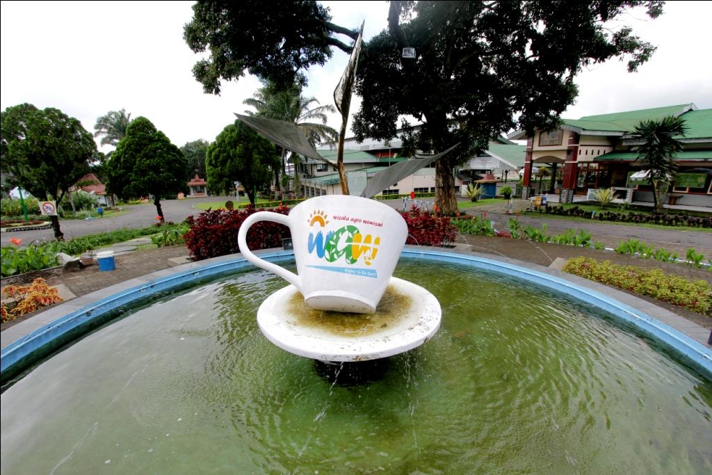 Rollaas Wisata Agro Malang Sebagai Salah Satu Kota Bersih Sejuk