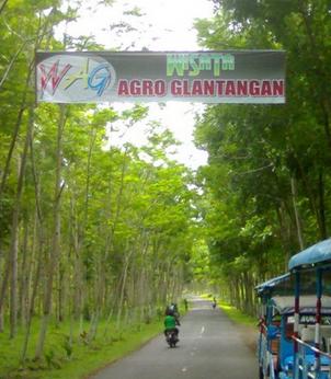 Wisata Agro Glantangan Jember Jawa Timur Daftar Tempat Warung Air