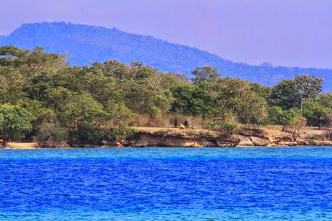 Nikmati Eksotisme Taman Nasional Bali Barat Neodamail Salah Satunya Yg