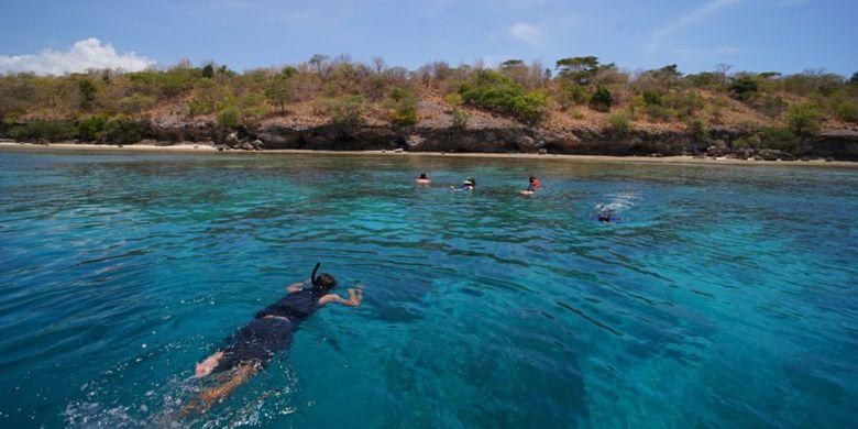 Pariwisata Bali Barat Kian Menjanjikan Kompas Wisatawan Snorkeling Sekitar Pulau
