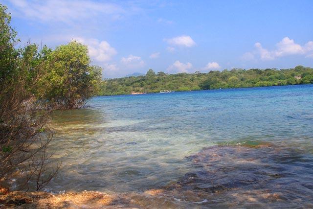 Taman Nasional Bali Barat Wayan Adi Give Smile Kab Jembrana