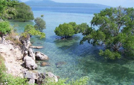 Taman Nasional Bali Barat Wayan Adi Give Smile West National
