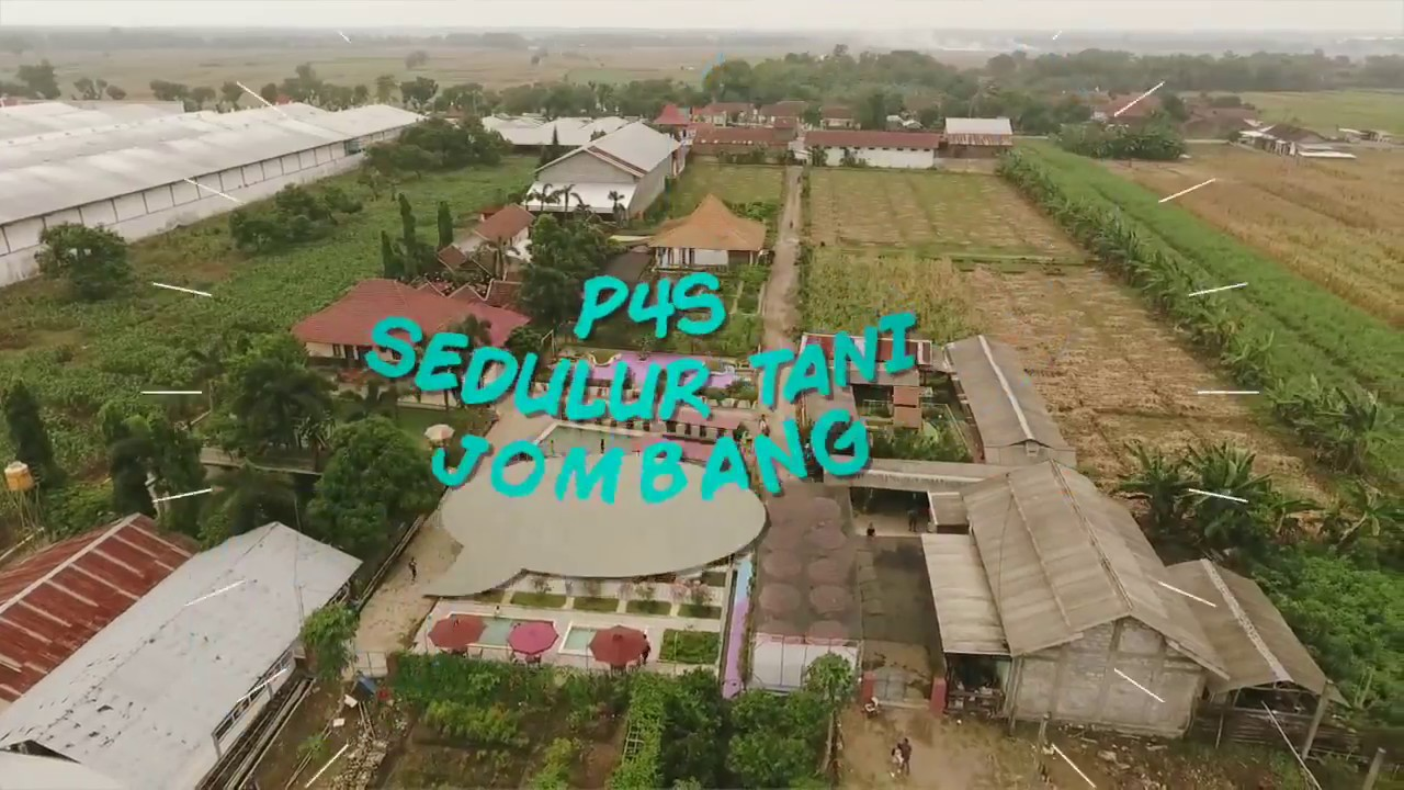 Vlog Highlight Petani Jaman Era Jokowi Sukses Agro Wisata Bale