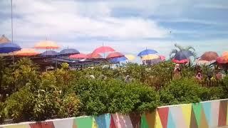 Wisata Bale Tani Serning Banjaragung Bareng Jombang Vidozee Agus Siswoyo