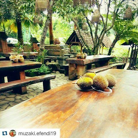 Kampoeng Djawi Kampoengdjawi Instagram Photos Videos Repost Muzaki Efendi19 Repostapp