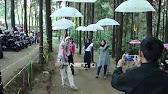 Wisata Banyu Mili Wonosalam Youtube 0 40 Bale Tani Argo