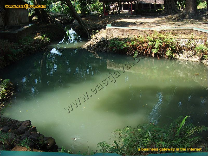 Sendang Original Natural Pool Jombang East Java Galleries Preview 08