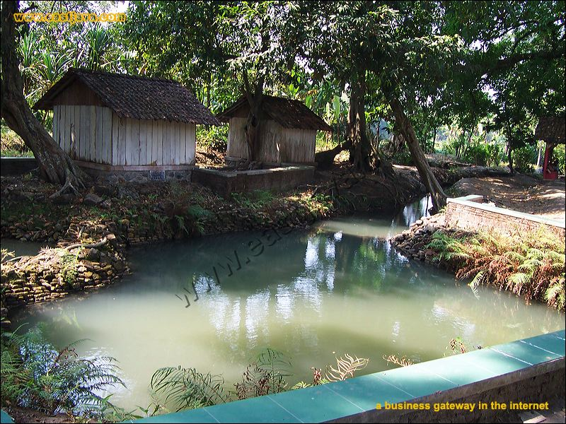 Sendang Original Natural Pool Jombang East Java Galleries Preview 12