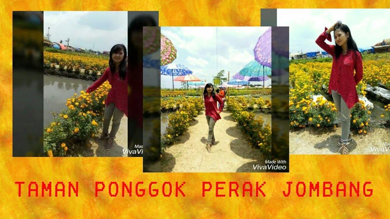 73 Taman Bunga Banjarsari Ponggok Jombang Cheely Youtube Bandarkedungmulyo Kab