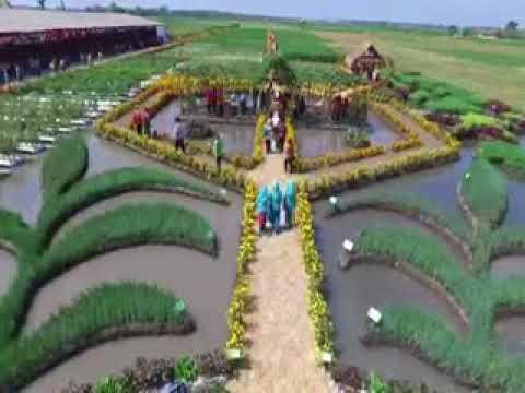 Banjarsari Agro Community Youtube Taman Ponggok Bandarkedungmulyo Jombang Kab