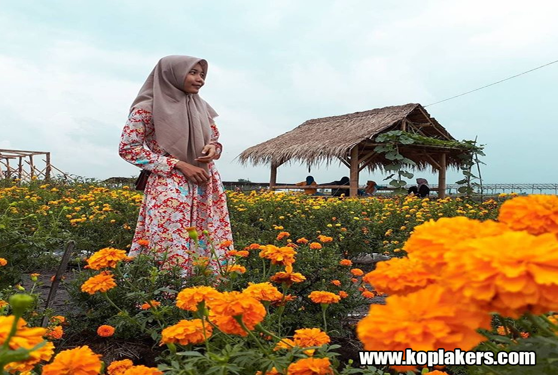 Berfoto Bersantai Taman Ponggok Bandar Kedungmulyo Perak Jombang Bunga Cantik