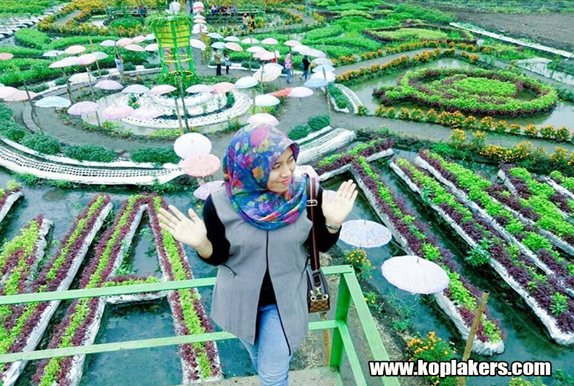 Berfoto Bersantai Taman Ponggok Bandar Kedungmulyo Perak Jombang Spot Banjarsari