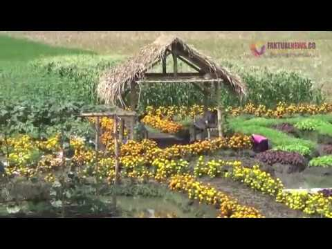 Lahan Pertanian Kabupaten Jombang Jadi Destinasi Wisata Youtube Taman Ponggok