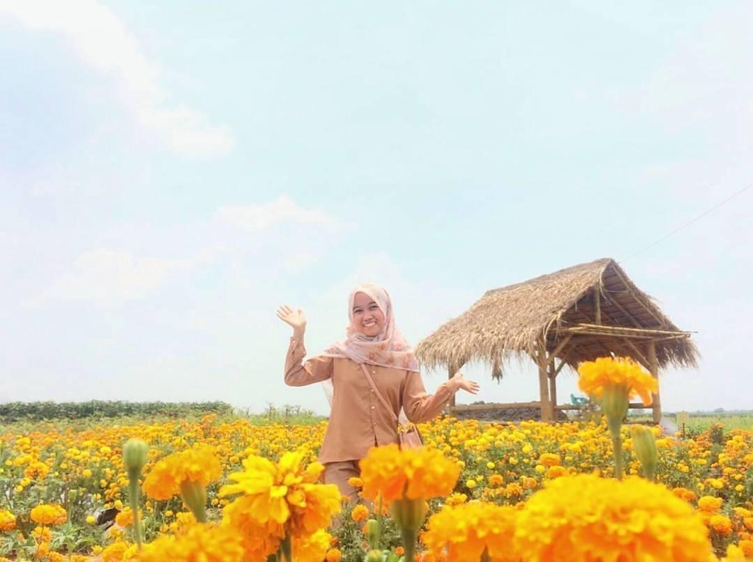 Lokasi Rute Menuju Taman Ponggok Jombang Destinasi Wisata Terbaru Instagenic